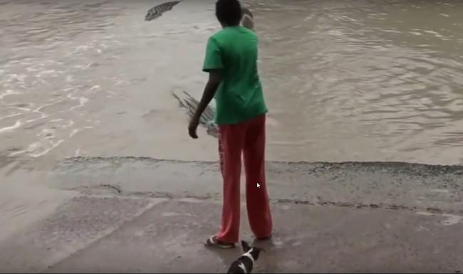 Une savate pour repousser un crocodile