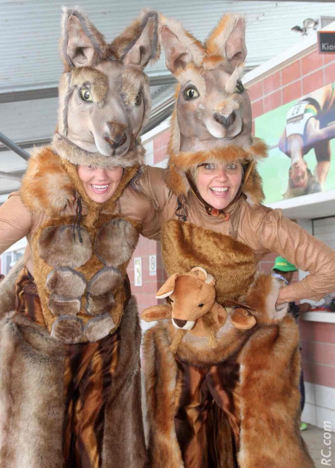 Sur les 40 millions de kangourous que compte L'Australie, deux se sont échappés pour rejoindre Perth.