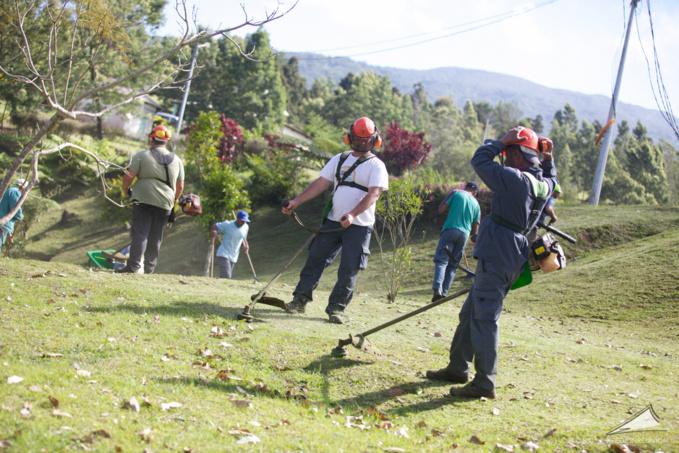 Les emplois verts contre la dengue