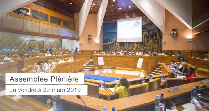 Assemblée Plénière du 29 mars 2019 - Budget primitif 2019