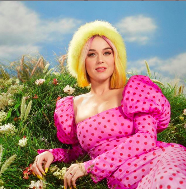 Katy Pery délestée de 2,7 millions de dollars pour plagiat