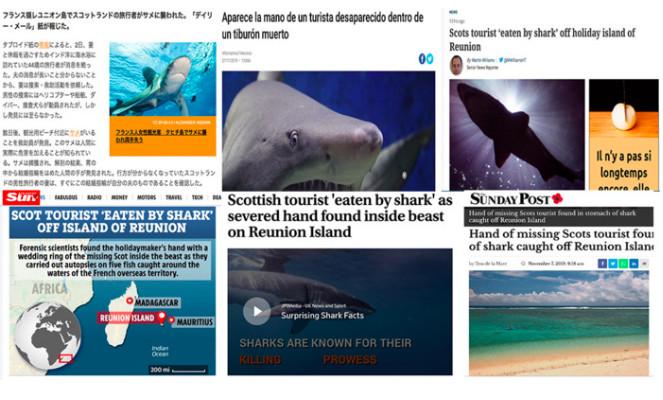 Du Japon au Brésil, la presse internationale relaye la découverte macabre dans l'estomac d'un requin-tigre