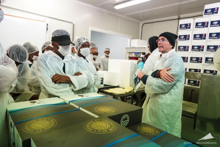 Développement des produits Péi dans la restauration scolaire