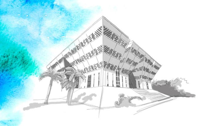 Budget Primitif 2020 de la Région Réunion