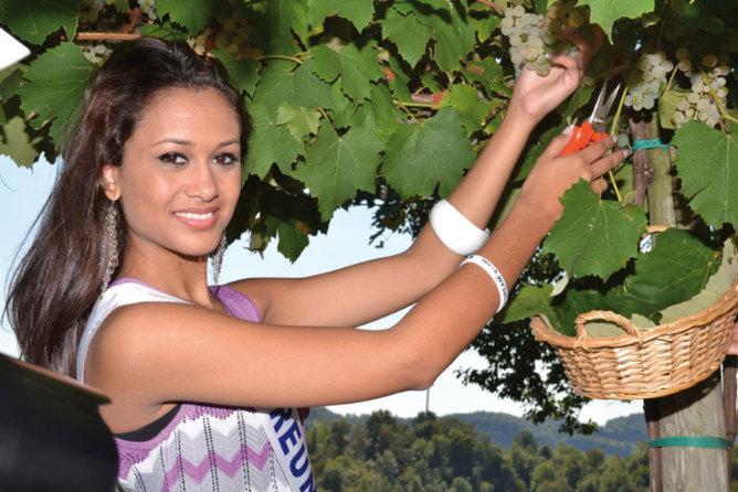 Astoria, histoire d'un vin italien très pétillant