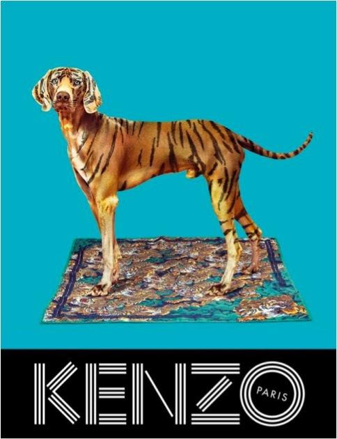 Kenzo: une nouvelle campagne