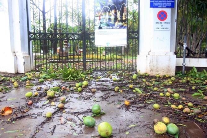 La Banque de la Réunion solidaire de l'agriculture