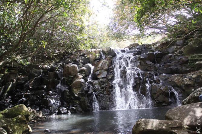 Plusieurs cascades, dans un univers paradisiaque. Mais attention, piquer une tête dans l'eau n'est pas permis!