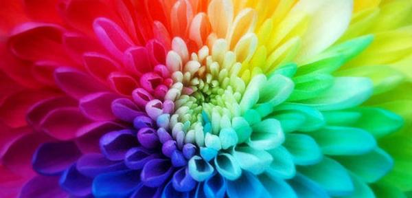 La chromothérapie: les couleurs soignent!