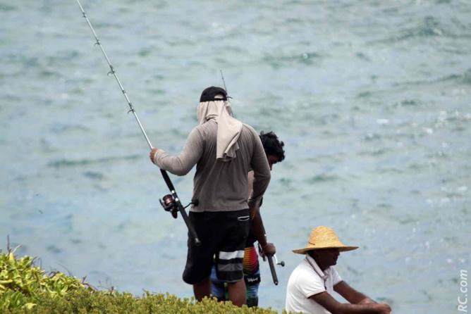 On vient taquiner le poisson…