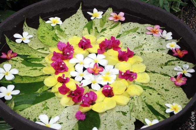 Des fleurs lorsque vous poussez les portes du Spa