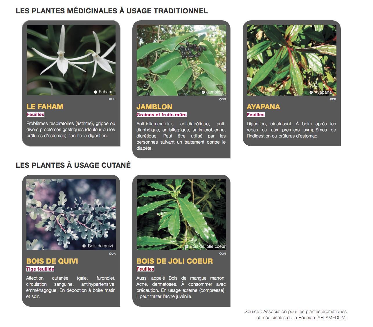 19 plantes locales à la Pharmacopée française