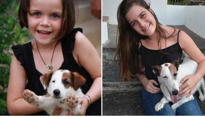 Perdu de vue pendant 7 ans : une famille retrouve son chien par miracle