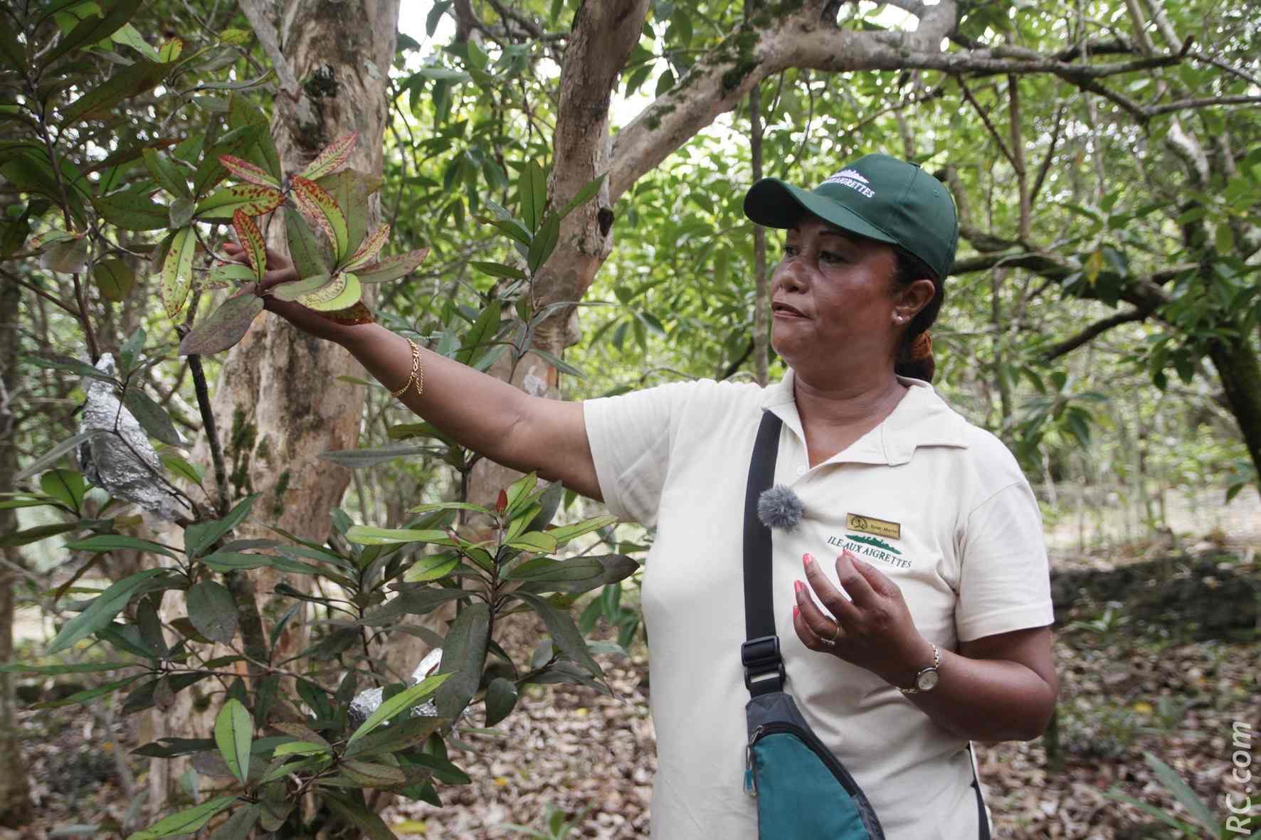 Une guide hors-pair et passionnée de la nature, en la personne de Rose-Marie, qui connaît l'île sous toutes ses facettes