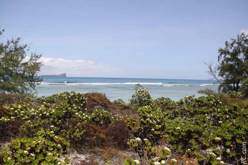 De l'îlot Gabriel, on peut apercevoir au loin le Coin de Mire