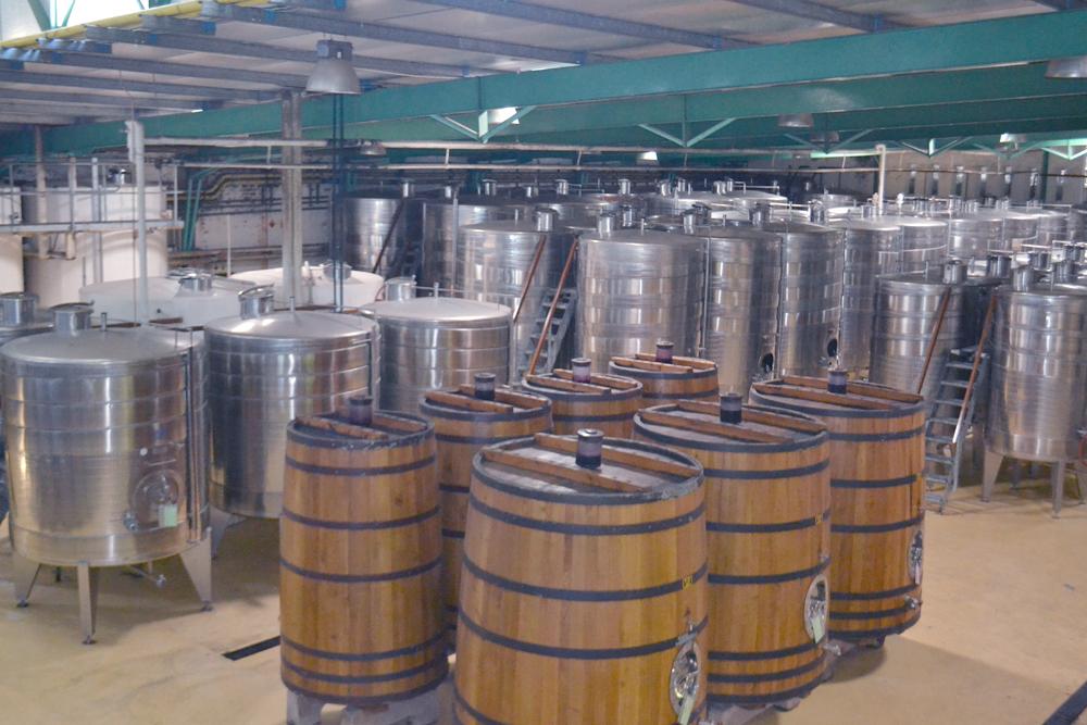Dans une usine de fabrication de vin