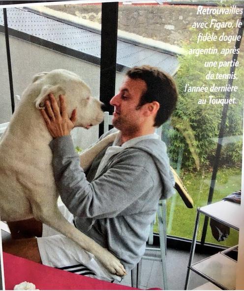 Sur le net, l'image est partout, Emmanuel Macron et son chien Figaro, cela ne s'invente pas!