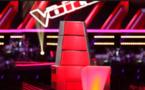 [VIDEO] Il va remplacer M Pokora dans The Voice