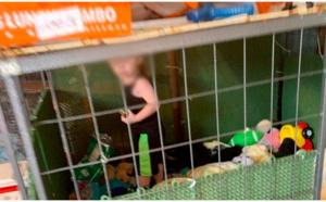 Un petit garçon de 18 mois retrouvé dans une cage, entouré de souris, serpents et autres animaux