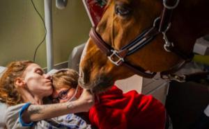 La bouleversante photo de la maman agonisante avec son cheval